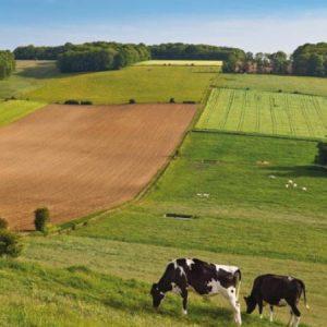 BAC-professionnel-exploitation-agricole-polyculture