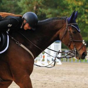equitation-hippologie-lycee-agricole-amiens