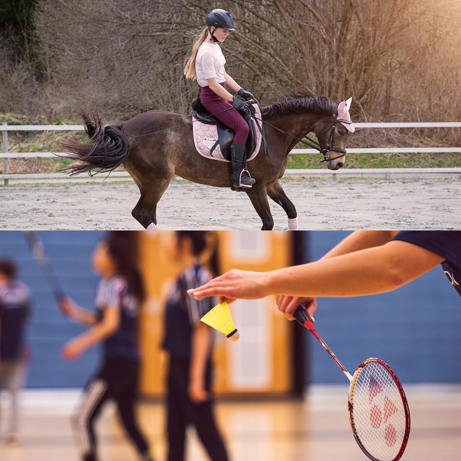 hippologie-equitation-section-sportive-badminton-option-bac-amiens